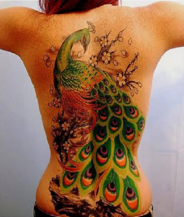 3d-peacock-Beautiful-Back-Gallery-tattoo-for-men
