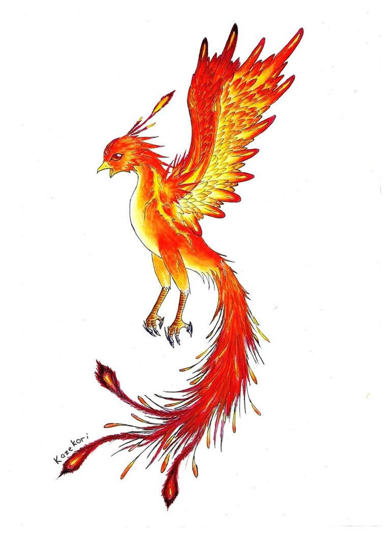 red_phoenix_by_kazekori-d36j50a